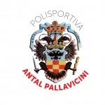 Logo-Antal-Pallavicini-+-stemma-PNG-NUOVO